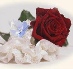 Prettymades Bridal